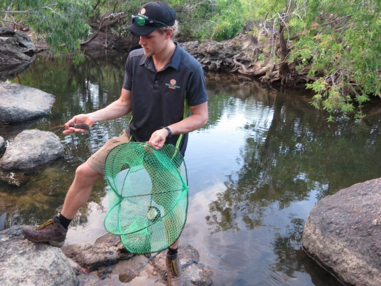 man with yabby trap and yabby