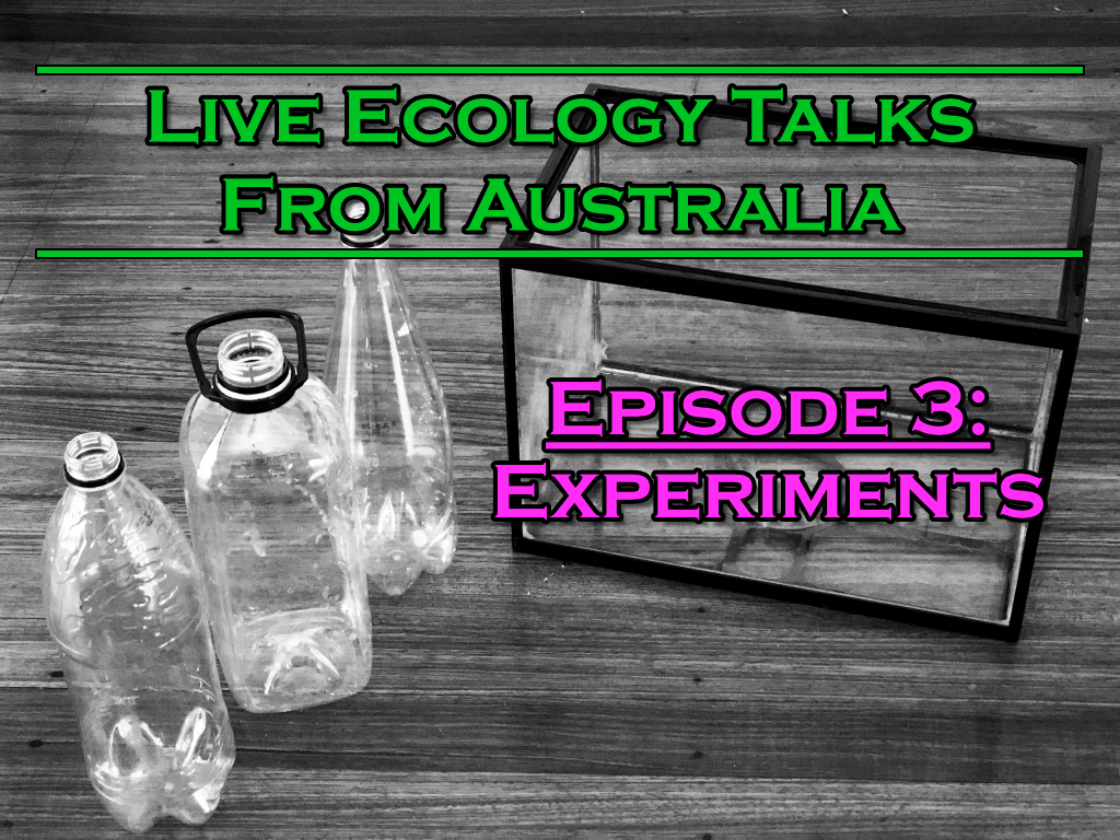 Title image of fishtank for experiment
