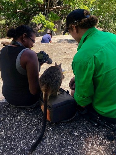 lady and man with wallaby in between